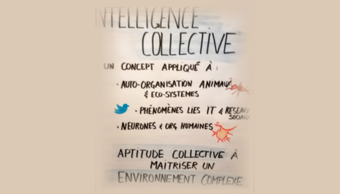 Intelligence collective et auto-organisation, transformation des organisations